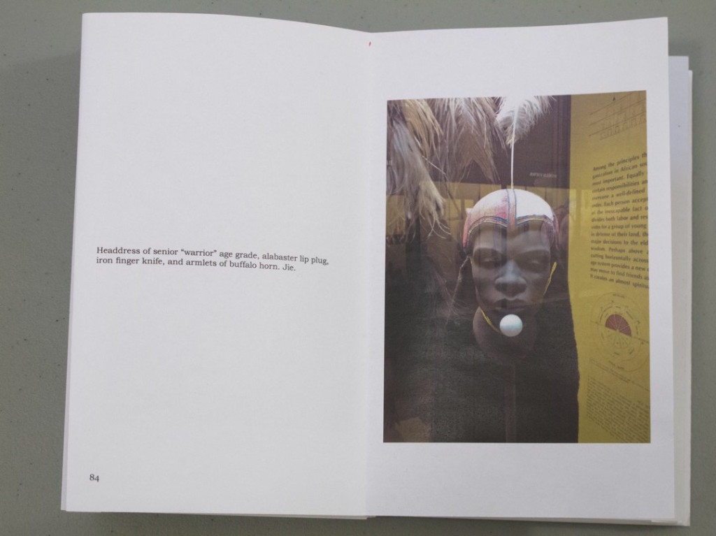 The Anonymous Head(S) of the East Woodland Indians in AMNH_24